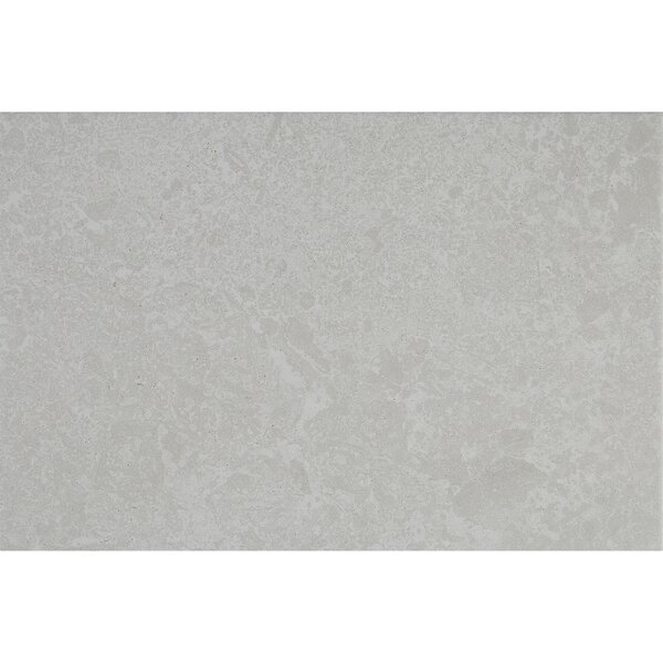 Newry 12 x 18 Ceramic Field Tile in Ivory by Itona Tile