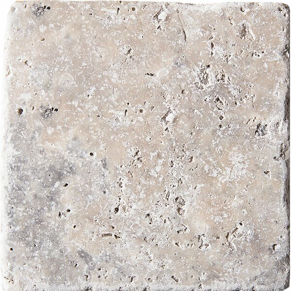 Tumbled 4 x 4 Travertine Field Tile in Silver by Parvatile