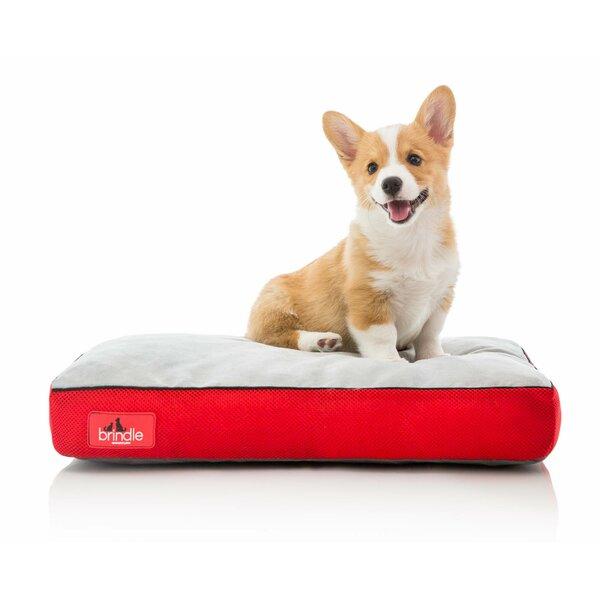 Soft Shredded Memory Foam Pet Bed by Brindle