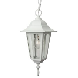 Oakhill Traditional 1-Light Outdoor Hanging Lantern By Charlton Home