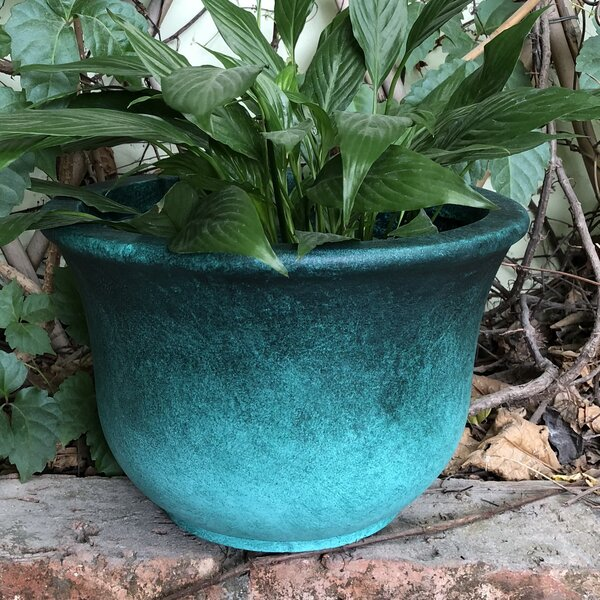Marisol Low Bell Pot Planter by World Menagerie