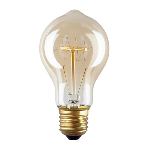 40W Amber E26 Incandescent Edison Standard Light Bulb (Set of 4) by Light Society