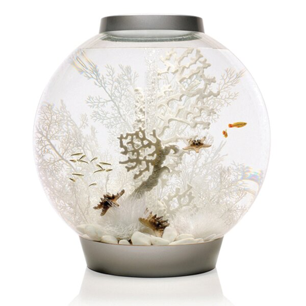 4 Gallon Classic Aquarium Bowl by biOrb