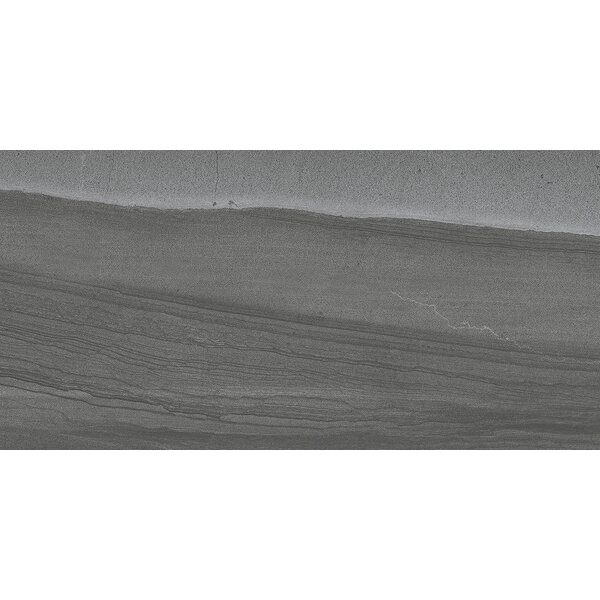 Sandstorm 12 x 24 Porcelain Field Tile in Sahara by Emser Tile