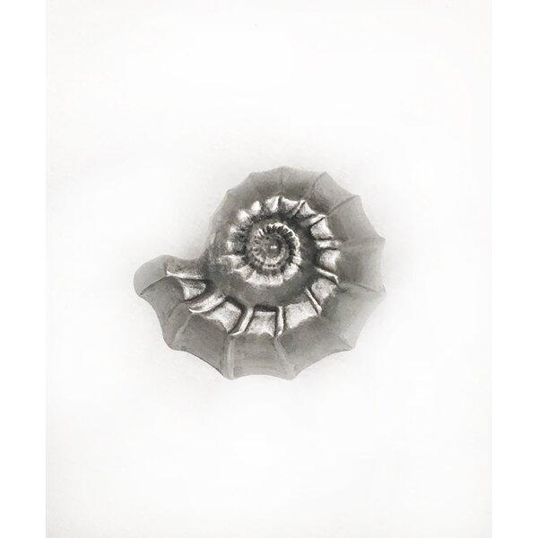 Nautilus Shell Novelty Knob by D'Artefax
