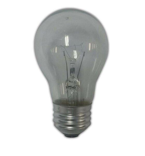 25W Light Bulb by String Light Company