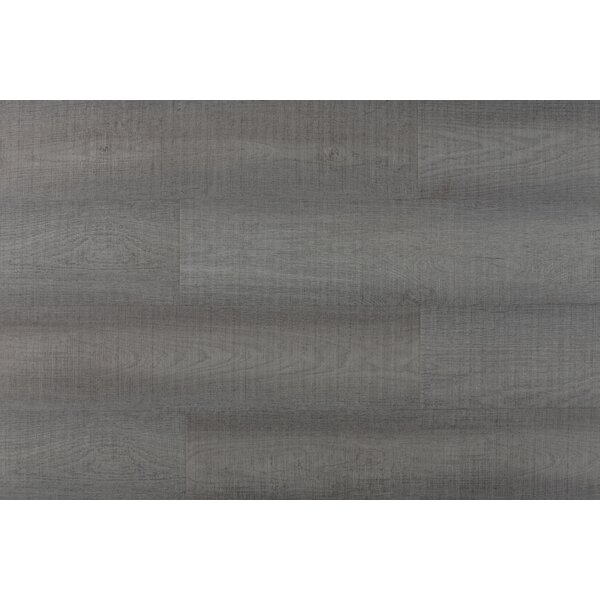 Chatman 4.75 x 48 x 12mm Oak LaminateFlooring in Light Gray by Serradon