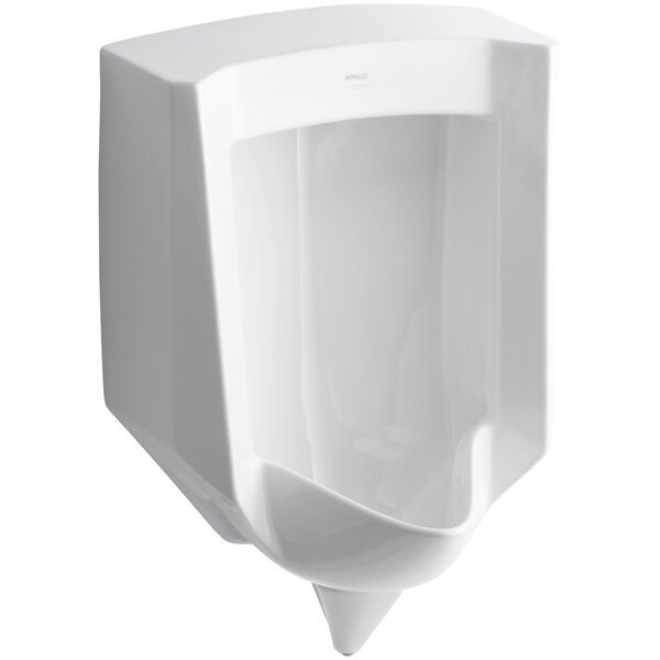 Stanwell Blow-Out Wall-Mount 1 GPF Urinal with Rear Spud by Kohler