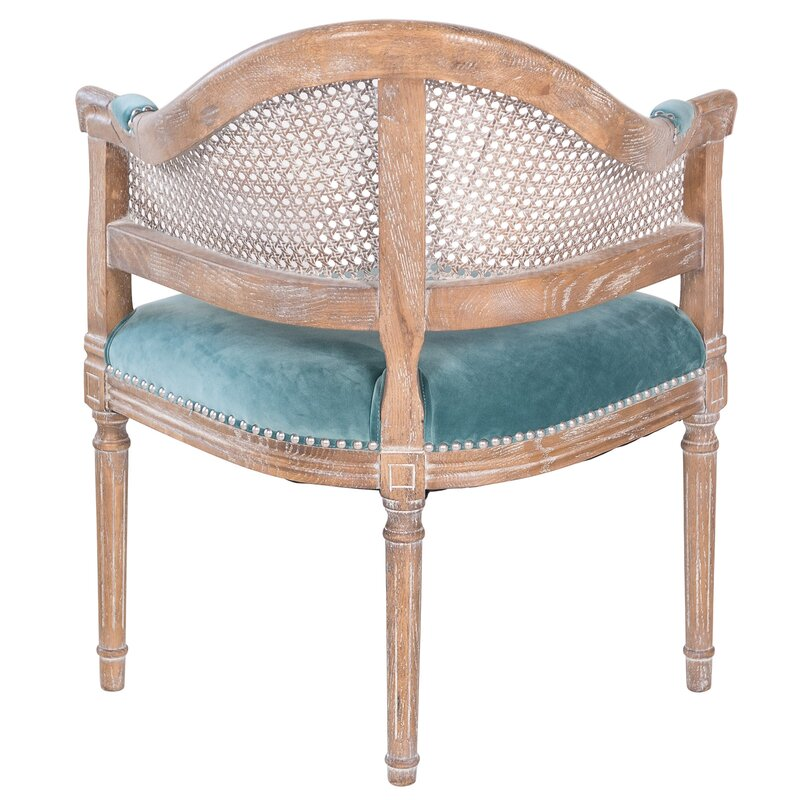 Fae French Antique Cane and Velvet Barrel Chair - Joseph Allen Fae French Antique Cane And Velvet Barrel Chair Wayfair