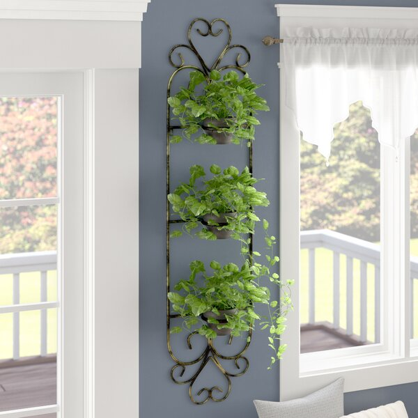 Colston 3 Pot Cast-Iron Wall Planter by Fleur De Lis Living