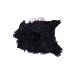 Compare Barnaby Long-Haired Hand-Woven Sheepskin Black/White Area Rug By House of Hampton