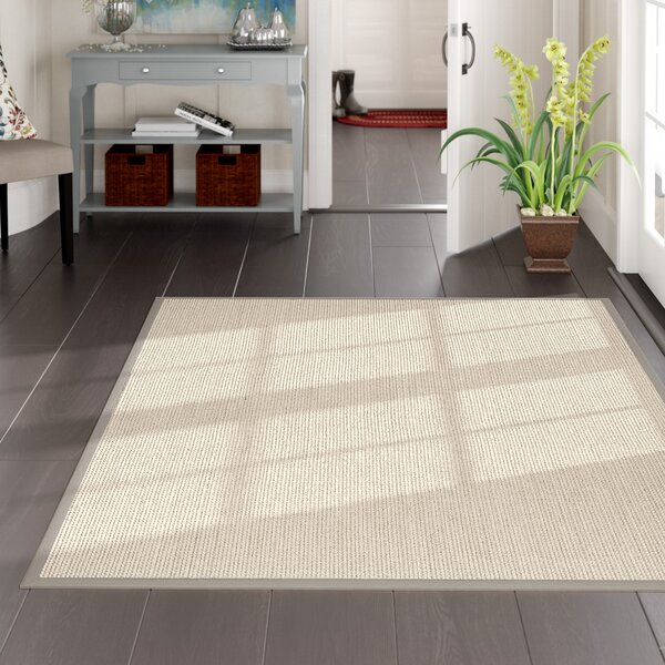 Hand-Woven Gray Area Rug by Darby Home Co