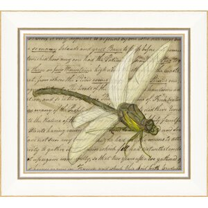 Dragonfly Framed Graphic Art by The Artwork Factory