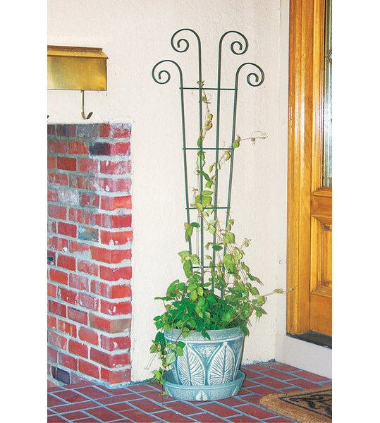 Planter Steel Fan Trellis by Panacea Products