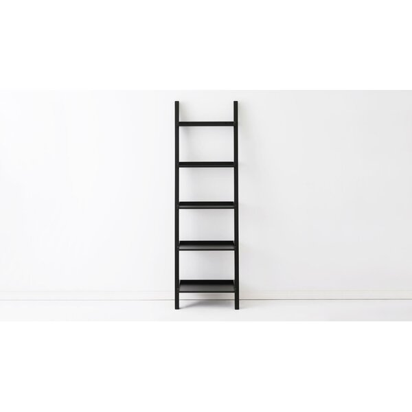 Asterix Ladder Bookcase By EQ3