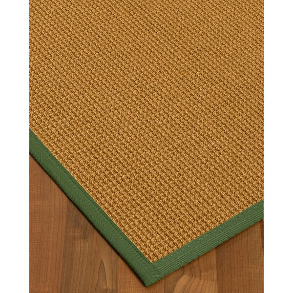 Aula Border Hand-Woven Brown/Green Area Rug by Bayou Breeze