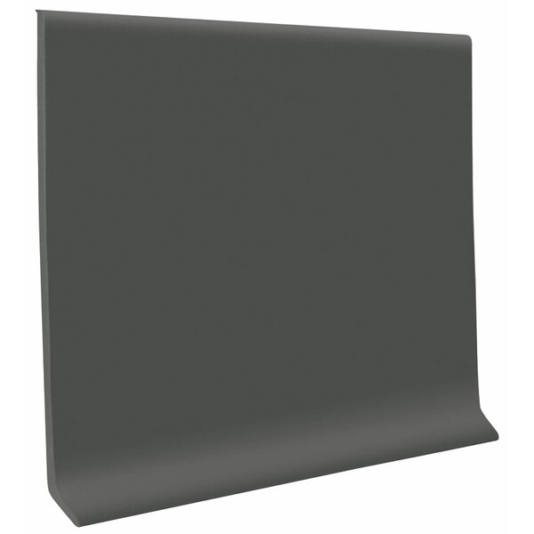 0.13 x 48 x 4 Cove Molding in Charcoal (Set of 30) by ROPPE