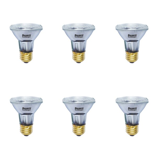 E26 Dimmable Halogen Light Bulb (Set of 6) by Bulbrite Industries