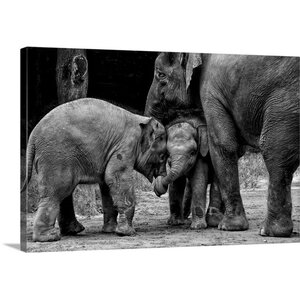 'Friends Forever' by Ernest Rex Photographic Print on Canvas by Great Big Canvas