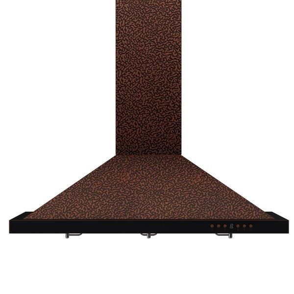 42 Designer Series 760 CFM Ducted Wall Mount Range Hood by ZLINE Kitchen and Bath