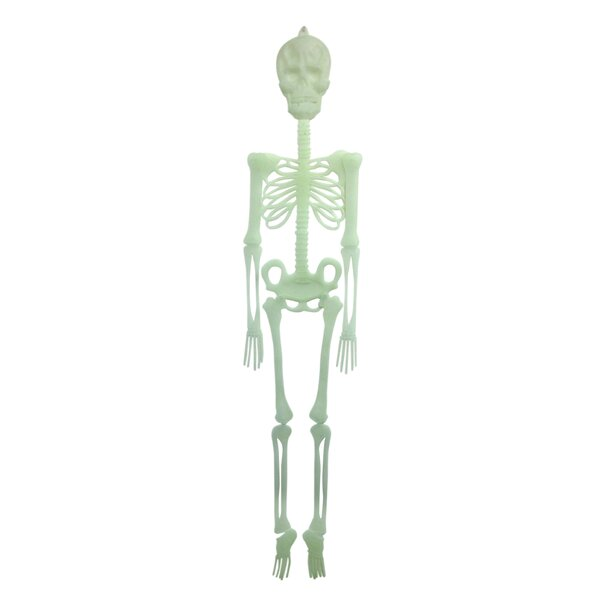 Decorative Glow in the Dark Skelton by Creative Motion