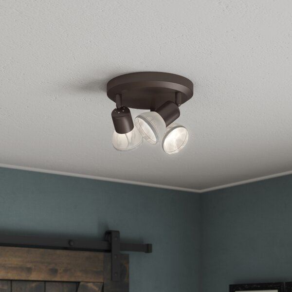 Raftery 3 Light Directional Spotlight By Wrought Studio.