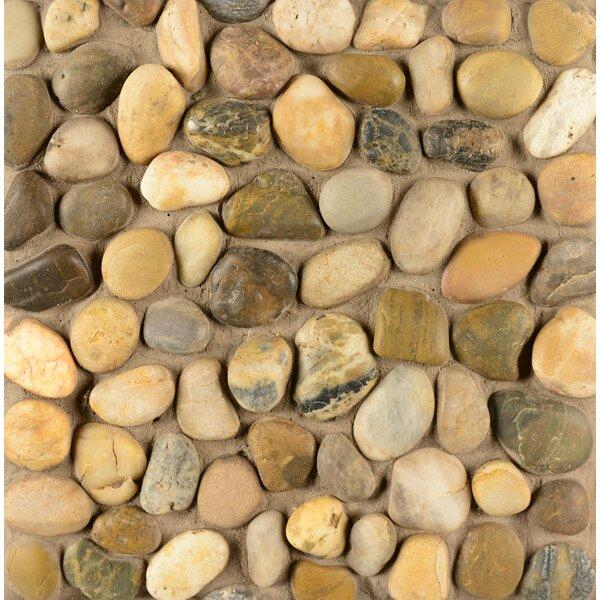 Pebble Rock Stone Pebble Tile in Kona by Grayson Martin