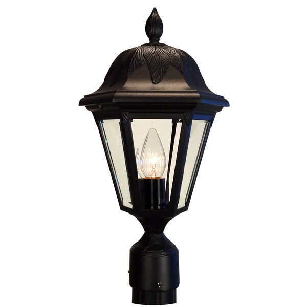 Floral 1-Light Lantern Head by Special Lite Products