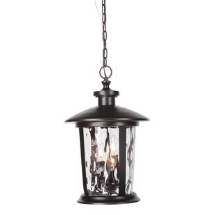 Trend Irasville 3-Light Outdoor Hanging Lantern By Longshore Tides