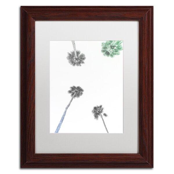 Downward Palm BW by Ariane Moshayedi Framed Photographic Print by Trademark Fine Art