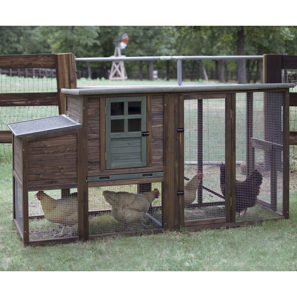 Hen House II Chicken Coop with Roosting Bar by Precision Pet Products