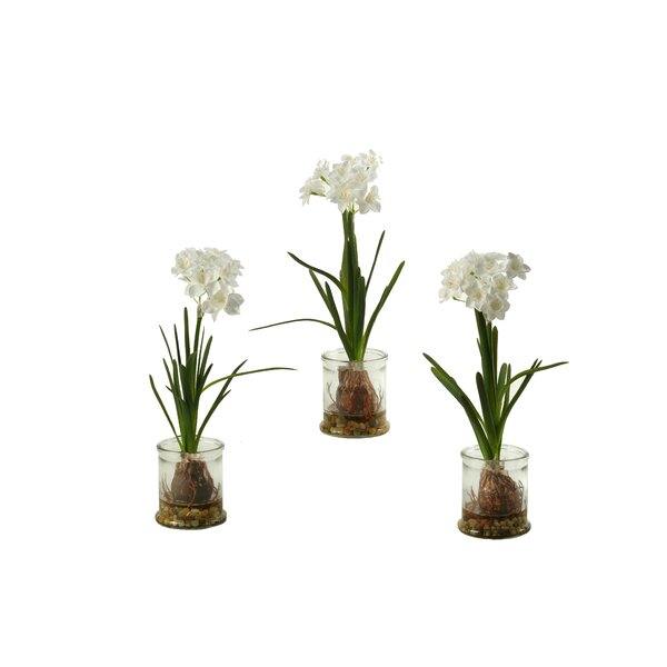 Paper in Glass Candle Holder (Set of 3) by Wrought Studio