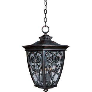 Best Choices Isaacson 3-Light Outdoor Pendant By Astoria Grand