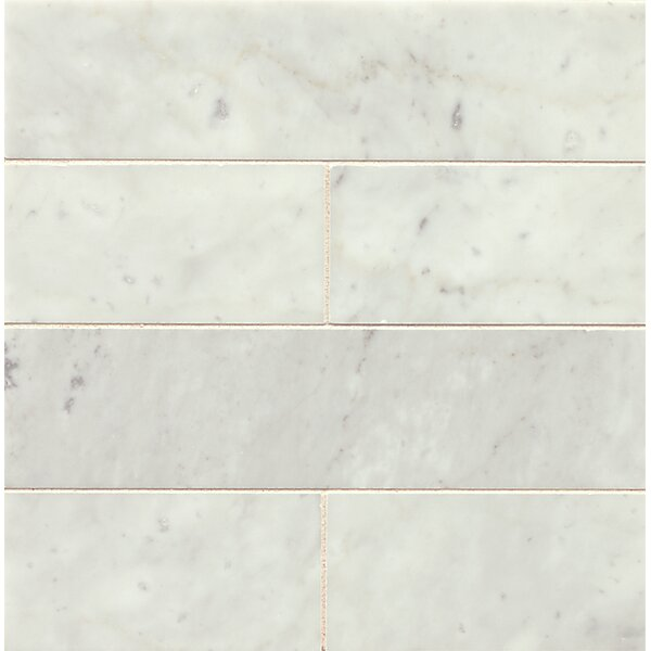 3 x 12 Honed Marble Field Tile in White Carrara by Grayson Martin