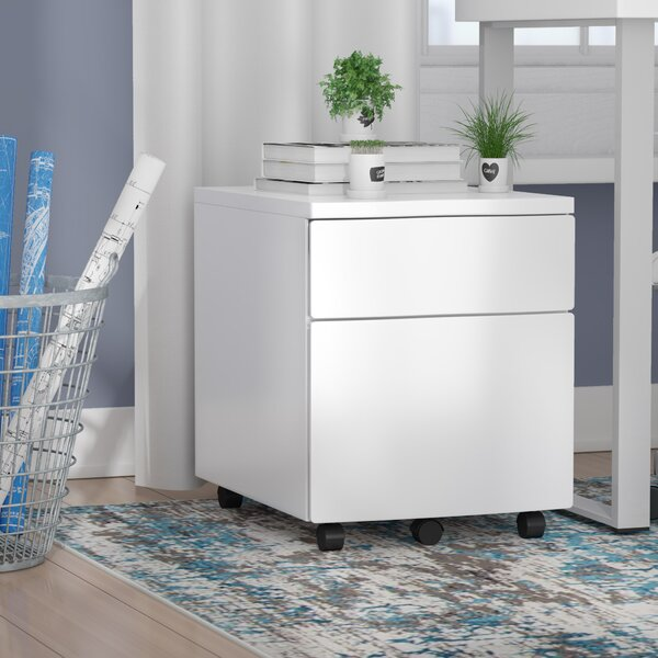 2-Drawer Vertical Filing Cabinet by Symple Stuff