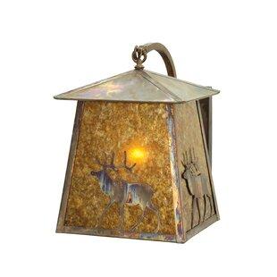 Bargain Outdoor Wall Lantern By Meyda Tiffany