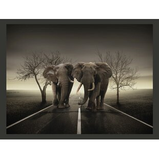 Elephant City 193m X 250cm Wallpaper
