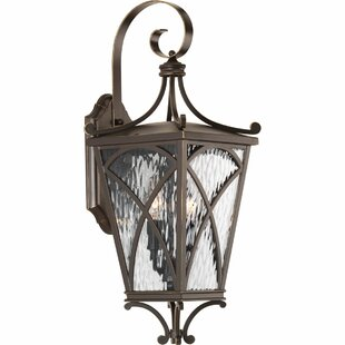 Best Alexandra 2-Light Outdoor Wall Lantern By Fleur De Lis Living