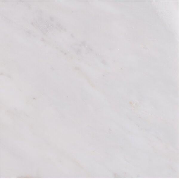 Arabescato Carrara 24 x 24 Marble Field Tile in White by MSI