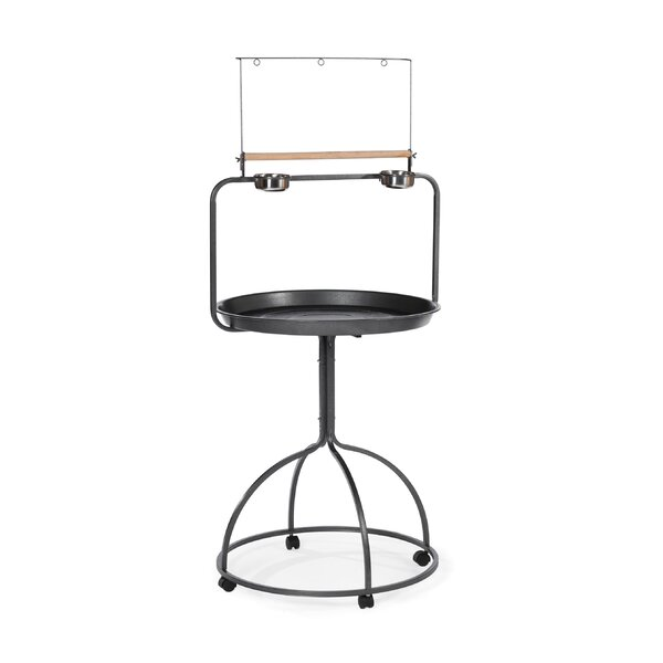 Round Parrot Playstand by Prevue Hendryx