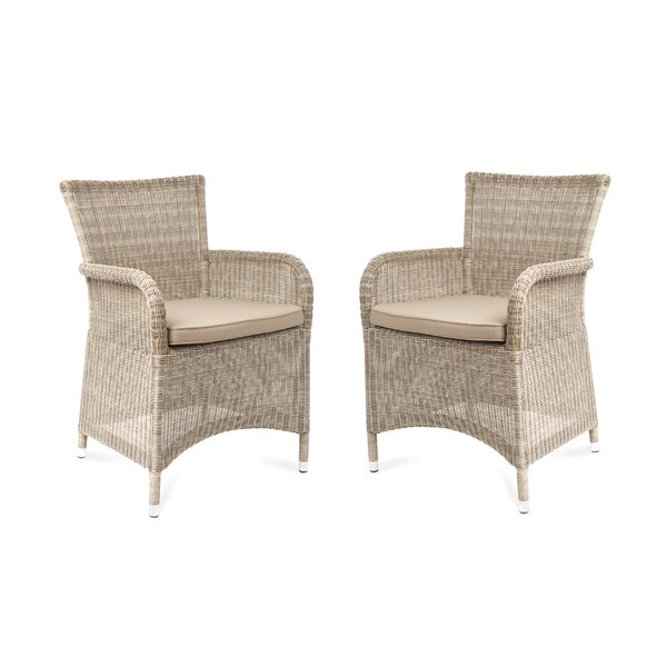 Yana Patio Dining Chair with Cushion (Set of 2) by One Allium Way