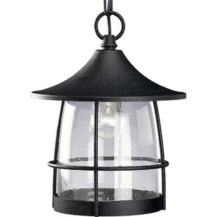 Read Reviews Triplehorn 1-Light Incandescent Hanging Lantern By Alcott Hill