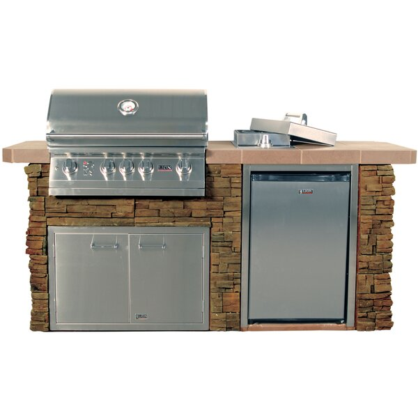 Advanced Q Stucco 4-Burner Built-In Gas Grill with Side Shelves by Lion Premium Grills