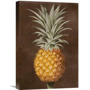 'Pineapple' by George Brookshaw Painting Print on Wrapped Canvas by Global Gallery