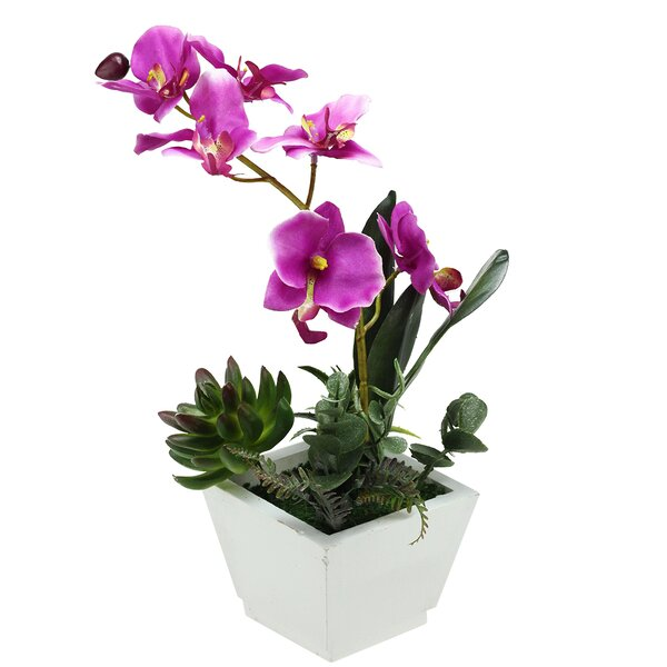 Artificial Orchids Desk Top Floral Arrangement in Pot by Northlight Seasonal
