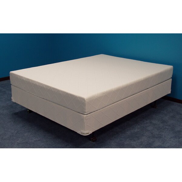Winners American Pharoah 9 inch Soft-side Waterbed Mattress by Strobel Mattress