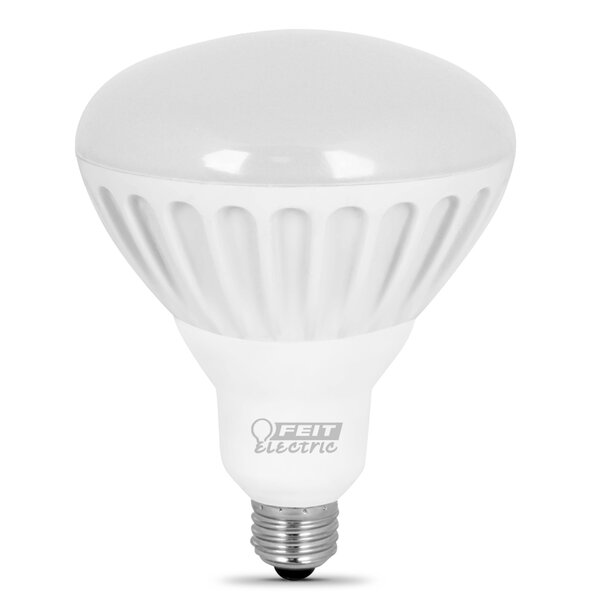 65W (2700K) LED Light Bulb (Pack of 2) by FeitElectric