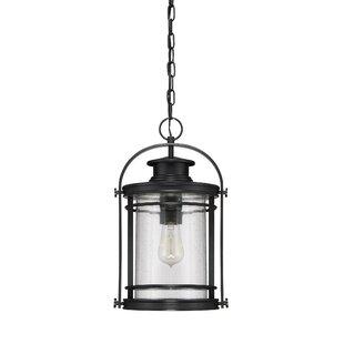 Catalina 1-Light Outdoor Hanging Lantern