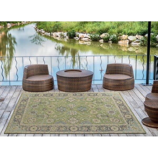 Dittmar Handmade Lime Green Indoor/Outdoor Area Rug by Charlton Home