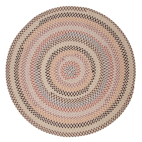 Shoshana Area Rug by August Grove